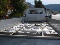 264 κιλά χασίς σε κλεμμένο φορτηγό