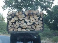 Σύλληψη λαθροϋλοτόμου  από το Δασαρχείο Αμφιλοχίας – Κατασχέθηκαν  ξύλα  και όχημα μεταφοράς