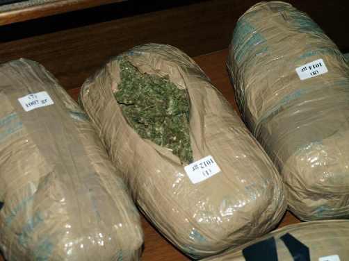 Σύλληψη εμπόρου ναρκωτικών στο Μενίδι Αμφιλοχίας