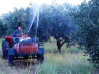 Πρέβεζα: Θερίζει ο καρκίνος σε χωριά της περιοχής  – Στους αλόγιστους ψεκασμούς των ελαιόδεντρων ρίχνουν τις ευθύνες οι κάτοικοι