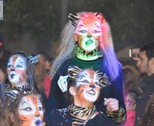 Αφιέρωμα στο «36ο Καρναβάλι Γυναικών Άρτας» – Video – Photos