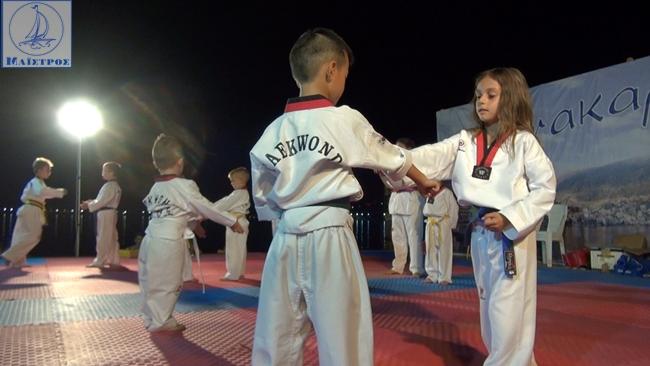 pigasos_amfiloxia (8)
