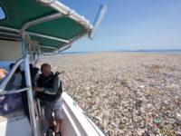 Θάλασσα από πλαστικά: Όταν το νερό έχει αντικατασταθεί από μπουκάλια και σακούλες