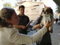 Έλεγχοι στα δεσποζόμενα ζώα συντροφιάς στο Δήμο Αρταίων
