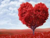 Διήμερη εθελοντική αιμοδοσία 20 και 21 Απριλίου ΣΕΑ Άρτας