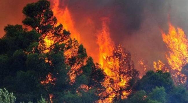 Καίγεται το χωριό Μακρυμάλλη