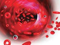 Έκτακτη πρόσκληση σε Εθελοντική Αιμοδοσία από το ΣΕΑ Άρτας