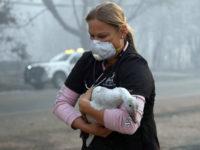Τουλάχιστον 25 νεκροί από την πυρκαγιά στην Καλιφόρνια – Απειλείται το Μαλιμπού
