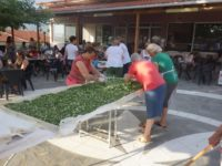 Έφτιαξαν 3 τετραγωνικά Ηπειρώτικη Λαχανόπιτα στα Γιάννενα
