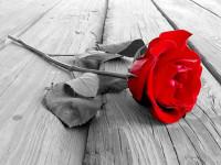 Ο ξαφνικός θάνατος 43χρονου βύθισε στο πένθος το Αμφιλοχικό Άργος