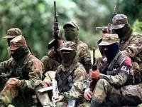 Κολομβία: Συμφωνία κυβέρνησης – FARC για το λαθρεμπόριο ναρκωτικών