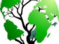 RECYCLING – Παγκόσμια Ημέρα Περιβάλλοντος – Κεντρο Ξένων Γλωσσών Χρύσα Καραχάλιου