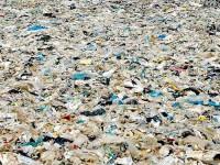 Η Καλιφόρνια απαγορεύει τις πλαστικές σακούλες
