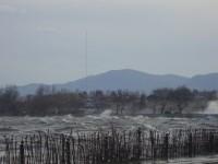 Έκλεισαν οι παραλιακοί δρόμοι από τον παγετό
