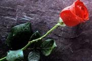 Τραγωδία στο Δήμο Αμφιλοχίας – Απροσδόκητος θάνατος 41χρονου – Σήμερα η εξόδιος ακολουθία