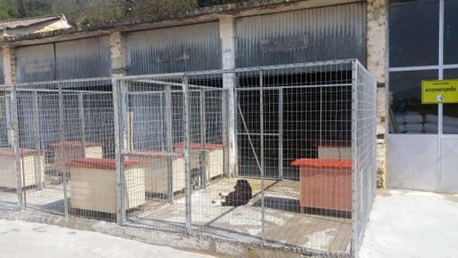 Γραφείο Διαχείρισης Αδέσποτων Ζώων από το Δήμο Αρταίων