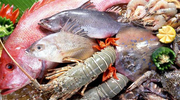 1 εκατ. ευρώ από το ΥΠΑΑΤ για την προώθηση αλιευμάτων στην Περιφέρεια Δυτικής Ελλάδας