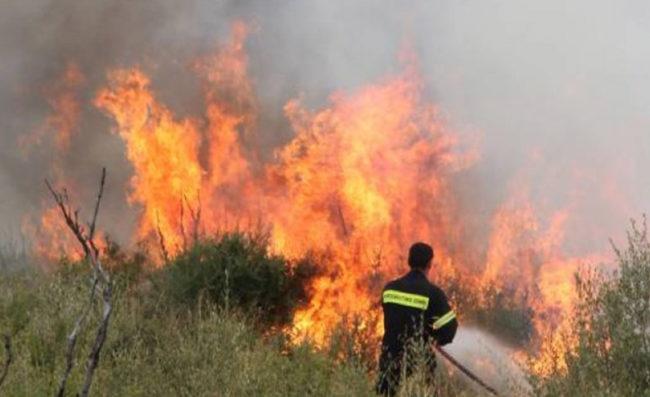 Φωτιά Εύβοια: Εντολή Χαρδαλιά να εκκενωθούν δύο χωριά