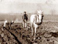 Ήμασταν κάποτε αγρότες