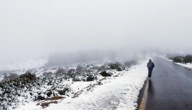 Καιρός: Παγωνιά λίγο πριν έρθει η Ζηνοβία! Χιόνια και η χώρα στην κατάψυξη