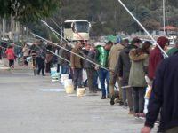 Πανικός στην Αμφιλοχία – Μαζεύουν τις γαρίδες με τους κουβάδες