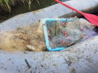 Παράνομη αλιεία στον Αμβρακικό – Κατασχέθηκε παράνομος εξοπλισμός