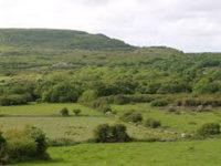 Νομοθετικές ρυθμίσεις για δασωμένους αγρούς και χορτολιβαδικές εκτάσεις