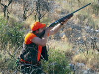Παρατείνεται η διάρκεια ισχύος αδειών κυνηγετικών όπλων