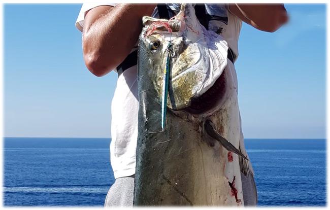 Ψάρεμα στο Ιόνιο – Δεν πίστευαν στα μάτια τους δύο ερασιτέχνες ψαράδες