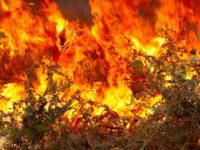 Προσοχή – Πολύ υψηλός κίνδυνος πυρκαγιάς στη Δυτική Ελλάδα το Σάββατο 1 Αυγούστου