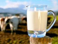 Γ. Στύλιος: Χρησιμοποιούν οι γαλακτοβιομηχανίες τα ποιοτικά κριτήρια για να επιτύχουν χαμηλότερη τιμή αγοράς του γάλακτος;