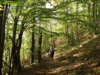 Μοναδικές εικόνες: Πίνοβο -Αετοχώρι – κορυφογραμμή Βίσογκρατ – Πίνοβο (2.156μ) – Αετοχώρι