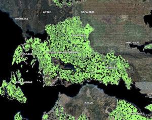 6+1 ανέκδοτα για την ανάκαμψη και οι δασικοί χάρτες…