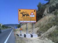 Τοποθέτηση αποτρεπτικών συστημάτων ατυχημάτων από διελεύσεις άγριας πανίδας