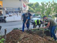 Μεγάλη η συμμετοχή των Αρτινών στις δράσεις του Δήμου για την Παγκόσμια Ημέρα Περιβάλλοντος