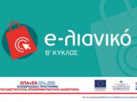 Διαδικτυακή ενημερωτική εκδήλωση «Ε-Λιανικό (Β' Κύκλος)»