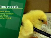 Δωρεάν πρόγραμμα κατάρτισηςστον κλάδο της πτηνοτροφίας από τον Οργανισμό «Νέα Γεωργία Νέα Γενιά»