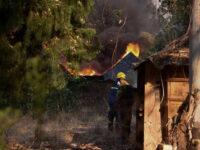 Πύρινη κόλαση – Οι φωτιές συνεχίζουν να καίνε σπίτια, δασικές εκτάσεις και καλλιέργειες