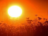 EMY για καύσωνα: Από τους ισχυρότερους των τελευταίων 40 ετών – Στα όρια το ηλεκτρικό ρεύμα
