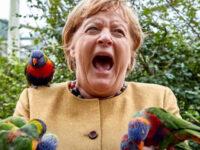 Δεν είπε ο Παπαγάλος…Τσίμπησε !!!!